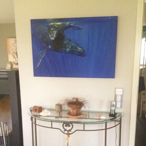 Unterwassergemälde im Kundenauftrag, Wal mit Nachwuchs